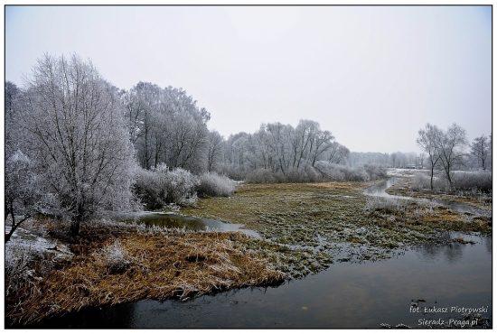 Szlaban (1)